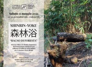"""Shinrin-Yoku-""""Bagno-di-foresta""""-Opera-Bosco-Calcata-Maggio-2021"""