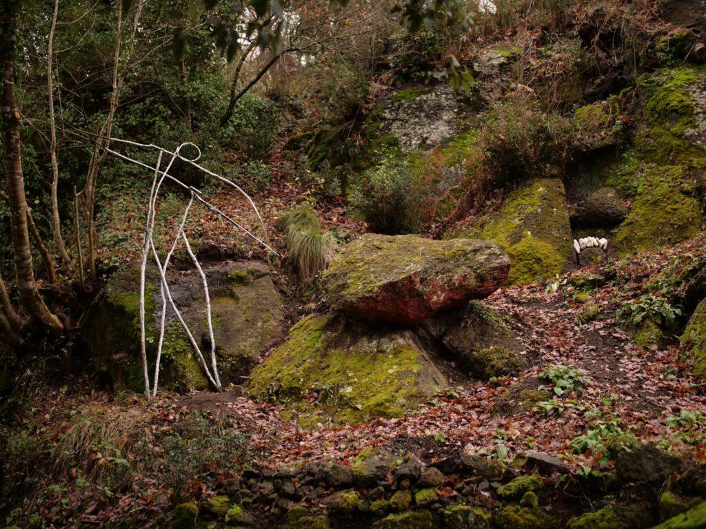 visita guidata opera bosco
