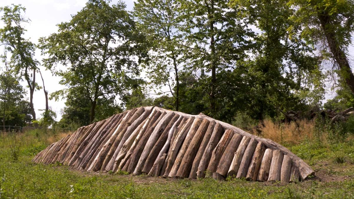 Biennale-Architettura-Pino-Genovese-Opera-Bosco-02